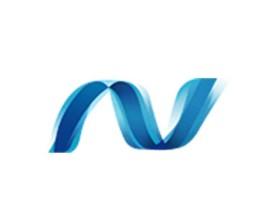 .NET 框架 Microsoft .NET Framework 5.0.10 中文离线安装包